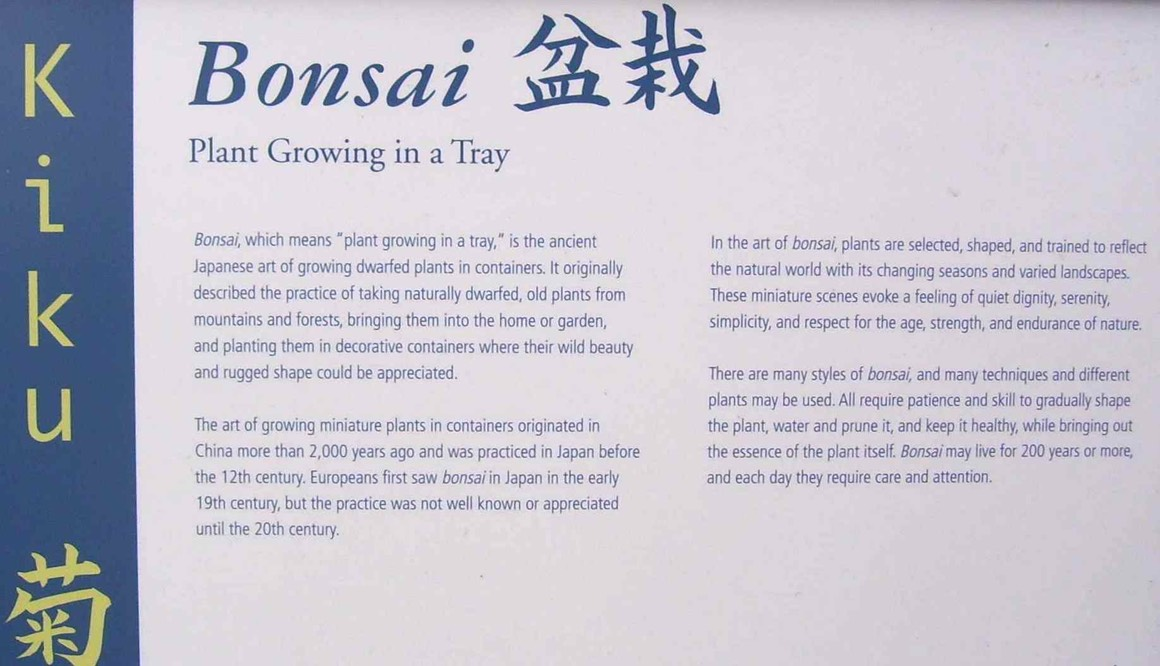 2_bonsai_sign
